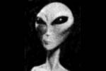 Alieno grigio di orione