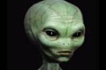 Alieno grigio Gizeh